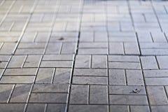 Texture flagstones gray stone Royalty Free Stock Photo