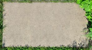 The texture of a flat concrete surface surrounded by grass and a raspberry bush. A blank for a postcard. Landscaped vegetative fr. Ame of a concrete background Royalty Free Stock Photo