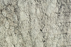 Texture of a flat limestone Stock Images