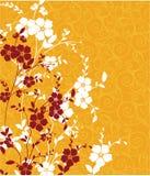Texture florale Photographie stock