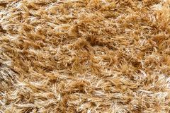 Texture fluffy carpet Stock Images