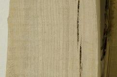 Texture focalisée d'un certain morceau de bois Images libres de droits