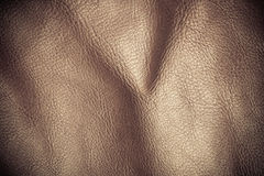 Texture folds brown skin leather background Stock Images