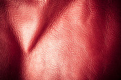 Texture of folds vivid red skin leather background Stock Images