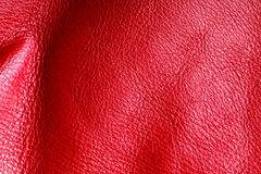 Texture of folds vivid red skin leather background. Red leather texture background closeup. Folds wavy natural skin material Royalty Free Stock Photo