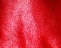 Texture of folds vivid red skin leather background. Red leather texture background closeup. Folds wavy natural skin material Royalty Free Stock Photography