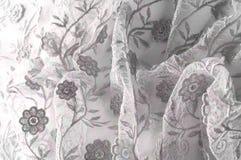 Texture, fond, modèle Dentelle rose sur le fond blanc broche Images libres de droits