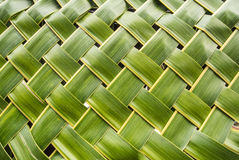 Texture form coconut leaf. Natural texture made from coconut leaf Royalty Free Stock Photography