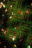 Texture fraîche de plancher Images stock