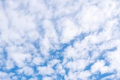 White fluffy clouds. Texture. Frame filled with white fluffy clouds  in the blue sky royalty free stock image