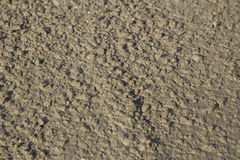 Texture of fresh mortar. Wet cement Royalty Free Stock Images
