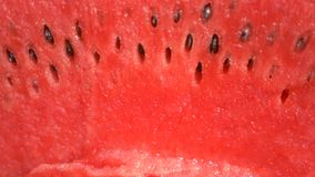 Texture of fresh ripe watermelon. Macro close up, top view 4k stock video