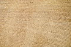 Texture of freshly sawn wood, background, closeup Stock Photo