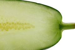 Texture of freshness cucumber. Stock Photos