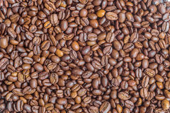 Texture of fried arabica coffee beans Stock Photos