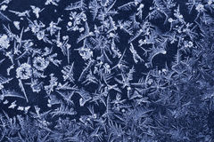 Texture of frost Royalty Free Stock Photography