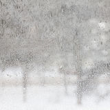 Texture of frosted glass. Winter background. Stock Photo