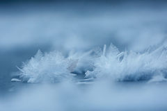 Texture of the frozen lake, Stock Images