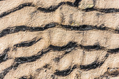 The texture of frozen sand. Wavy texture of frozen sand lying on the banks of the river stock photos
