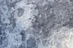 Texture of frozen water with bubbles Stock Photography