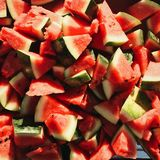 The watermelon stock images
