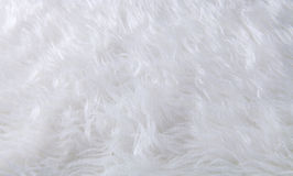 texture of fur carpet Stock Photo