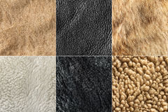 Texture fur and leather Royalty Free Stock Image