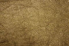 Texture of a genuine leather. Of bronze color Stock Photography