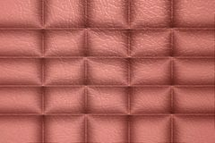 Texture of genuine leather Stock Image