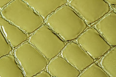 Texture of genuine leather close-up, embossed under the skin a khaki crocodile. For modern pattern, wallpaper or banner. Texture of genuine patent leather close Stock Images