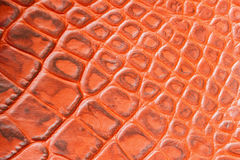 Texture of genuine leather close-up,embossed under the skin a orange brown crocodile. For modern pattern, wallpaper or Stock Photos