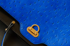 Texture of genuine leather close-up with embossed under the skin of Ostrich, gold lock, fashion blue color. Background Stock Images