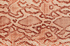Texture of genuine leather close-up, embossed under the skin  a reptile, background Royalty Free Stock Photography