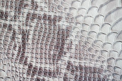 Texture of genuine leather close-up, embossed under the skin a reptile, background. Texture of genuine leather close-up, embossed under the skin a reptile, trend Stock Photos