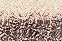 Texture of genuine leather close-up, embossed under the skin  a reptile, beige-brown color, background Stock Photo