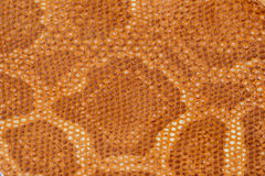 Texture of genuine leather close-up, embossed under the skin a reptile, exotic background. Texture of genuine leather close-up, embossed under the skin a reptile Stock Photo