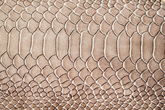 Texture of genuine leather close-up, embossed under the skin a reptile, trend exotic background. Texture of genuine leather close-up, embossed under the skin a Royalty Free Stock Images