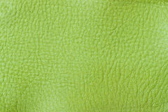 Texture of genuine leather close-up, fashion spring green color. For background , backdrop, substrate, composition use. Texture of genuine leather close-up Royalty Free Stock Photo