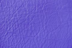 Texture of genuine leather, lilac color, background, surface. For your backdrop, with copy space. Texture of genuine leather, lilac crocus color, background stock photos