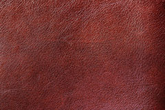 Texture of Genuine Leather shiny, antique, cracked, ,maroon color, background, surface. Texture of Genuine Leather spotted, painted, with wrinkle, crease, brown royalty free stock photos