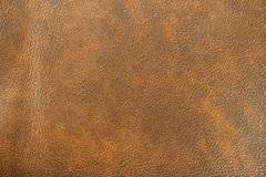 Texture of Genuine Leather spotted, painted, with wrinkle, crease, brown color, background, surface. Stock Photos