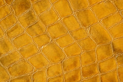 Texture of genuine patent leather close-up, embossed under the skin a orange crocodile. For modern pattern, wallpaper or. Texture of genuine leather close-up Royalty Free Stock Images