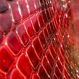 Texture of genuine patent leather close-up, embossed under the skin a red, pink reptile. stock image