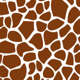 Texture of giraffe skin Royalty Free Stock Image
