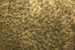 Texture gold. Goden texture, beautiful sun reflexion with stone background stock photo