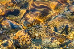 Texture of golden brown river rocks with clear shallow water. Texture of shallow water over golden brown river rocks creates a unique abstract effect in warm Royalty Free Stock Photography