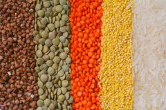 Texture from grain, buckwheat, lentil, millet, rice Stock Image