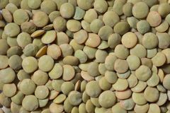 Texture from grain, green lentil Royalty Free Stock Image