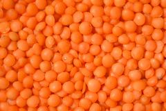 Texture from grain, red lentil Royalty Free Stock Photography