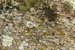 Texture of a granite stone I royalty free stock images